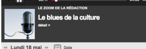 Le blues de la culture sur France Inter
